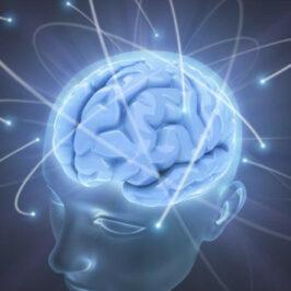 Gagner en productivité et en impact grâce au MindMapping